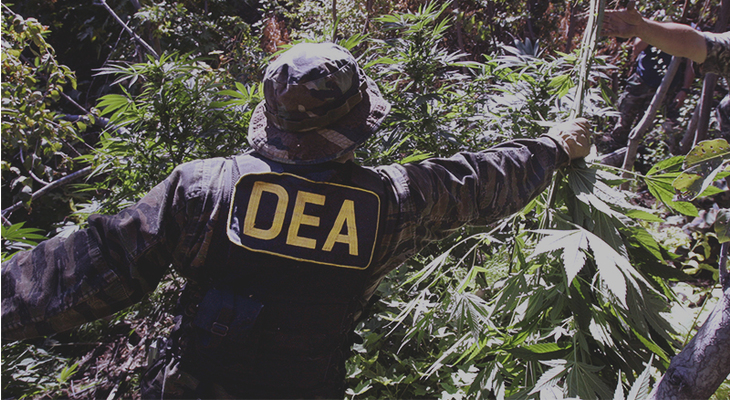 main_content_DEA_Continues_to_Delay_Decision_on_Rescheduling_Cannabis_WIDE